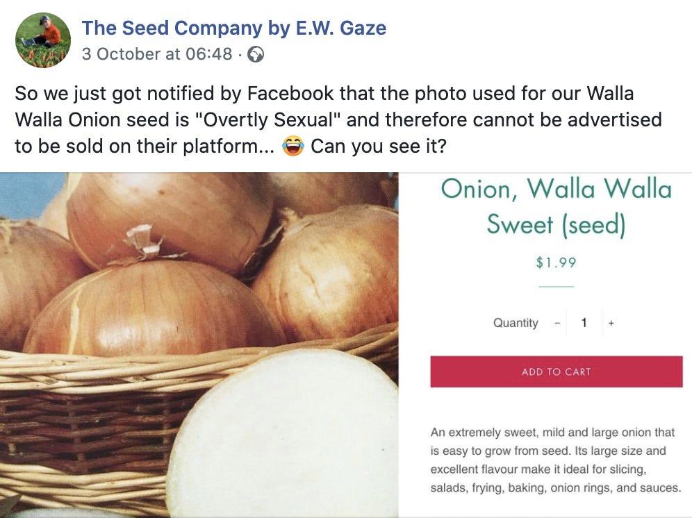 facebook soğan, facebook, yapay zeka,